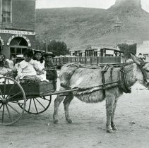 Image of Children in a donkey cart