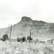 Image of Southeast Golden