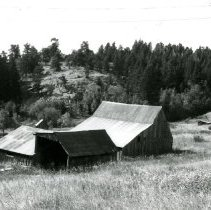 Image of Large barn at Pearce Family Ranch