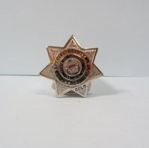 Image of 2008.010.161 - Badge, Law Enforcement