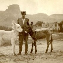 Image of Man with burros