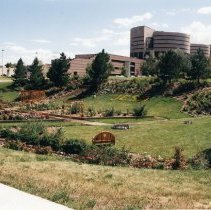 Image of Sheriff's Complex Rose Garden