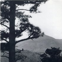 Image of Lariat Trail in the 1930's