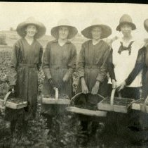 Image of Truelsen berry farm pickers