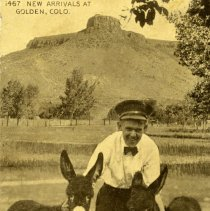Image of postcard 1467 New Arrivals at Golden, Colo.