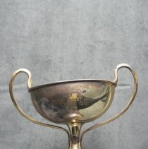 Image of Ladies Curling Trophy