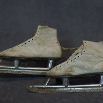 Image of 1991.0008.01 - Skate, Ice