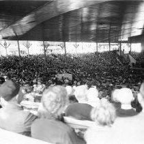 Image of Amphitheater Audience - Unknown