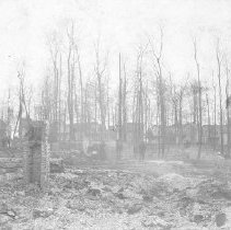 Image of Aftermath of Miller Park Fire - Sherman, W.C.