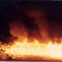 Image of Grandstand Destroyed by Fire - Unknown