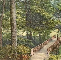 Image of Bridge Among the Beeches - Unknown