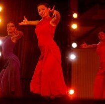 Image of Ragamala Music and Dance Theater - Roehrig, Michele