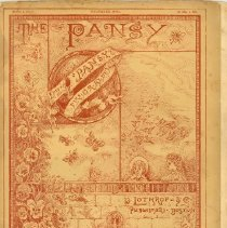 Image of The Pansy -