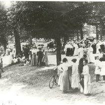Image of Gathering in the Park - Unknown