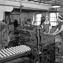 Image of MD Biscuit Company