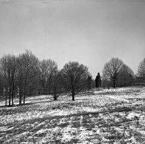 Image of Open Field