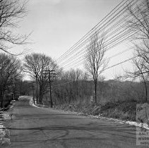 Image of Street with Power Lines