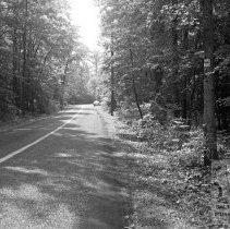 Image of Grace's Quarters Road