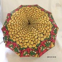 Image of Umbrella - 2001.01.19.18