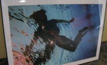 Image of Emerge Submerged - 2013.2.2