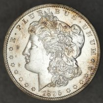 Image of Obverse: 1895 O Morgan Dollar