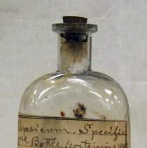 Image of Lloyd Brothers, Pharmacists, Inc. - Lloyd Bottle Collection