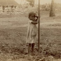 Image of Indian children with sugar cane. Jamaica 1891-2, CG Lloyd