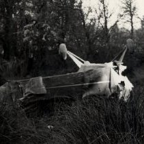 Image of Airplane that crashed and killed Gub Veget, 1941 - 2015FIC328