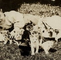 Image of Boy with kittens
