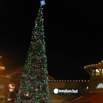Image of Xmas Tree at Premium Outlet mall in 2014  - 2016FIC4570
