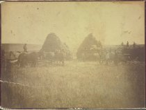 Image of RG2026.PH0-000036 - Print, Albumen