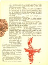 Image of 10645-210-(B) - Clipping, Magazine; Article; John Falter; Offset Lithograph; Liberty