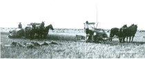 Image of RG4121.AM.S5.F142.Thrashing.Stats.S.Dakota.State.H.S.1908.Ipswich.SD, NSHS