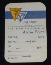 Image of 11640-307 - Badge, Cub Scout Arrow Point, Gold, On Card