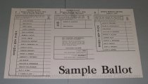 Image of 13143-161 - Ballot, Sample, Primary, Lincoln, council, Airport Authority, Charter Amendment, School Primary