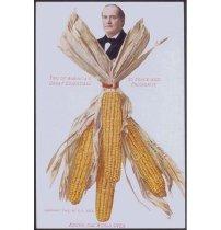 Image of 3801-121-(1) - Postcard, Political; William Jennings Bryan