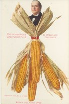 Image of 3801-121-(2) - Postcard, Political; William Jennings Bryan