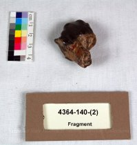 Image of 4364-140-(2) - Fragment, Tooth, Elephant, 4; 1 Of 4
