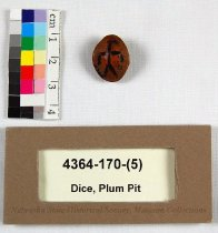 Image of 4364-170-(5) - Dice, Plum Pit; 1 Of 6
