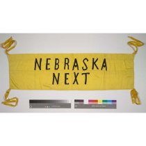Image of 4622-10 - Banner; Suffrage, Nebraska Next