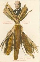 Image of 7956-6077 - Postcard; William Jennings Bryan