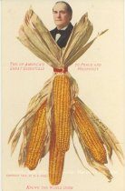 Image of 7956-6079 - Postcard; William Jennings Bryan