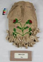 Image of 8634-224 - Bag; Beaded, Floral