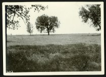 Image of RG2102.PH000005-000009b - Print, Photographic