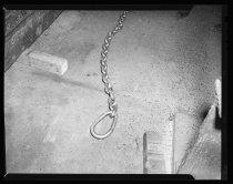 Image of RG2183.PH001949-000713-5 - Negative, Sheet Film
