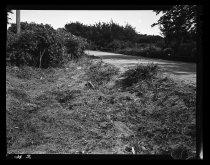 Image of RG2183.PH001949-000725-2 - Negative, Sheet Film