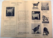 Image of 8910-321 - Poster, Imperial Goatery