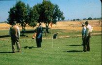 Image of RG4121_DBorg_Golf_Cover_18