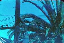 Image of RG4121.54.SF Scenes 3