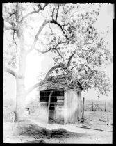 Image of RG3882.PH0016-0171 - Negative, Sheet Film
